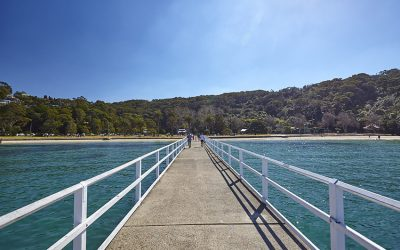 Things to do in Chowder Bay