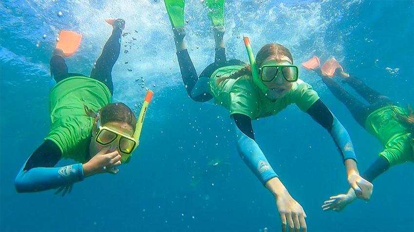 kayaking chowder bay